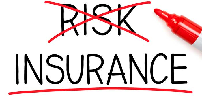 "The words ""risk"" and ""insurance"" with risk crossed out."